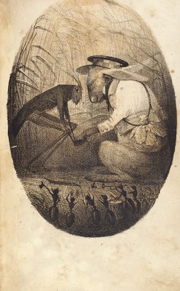 Гребенка, Е.П. Путевые записки Зайца. СПб.: Тип. Э. Праца, 1844.