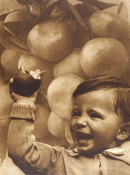 [Уникальный экземпляр с сохранением издательской суперобложки] Советские субтропики. Огонек. Специальный номер / оформление Эль и Эс Лисицких. М.: Журнально-газетное объединение, 1934.
