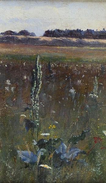 Андреев Владимир Иванович (1869–не ранее 1928) (?) «Травы». Этюд. 1890-е. Холст, масло, 16 х 10,1 см.