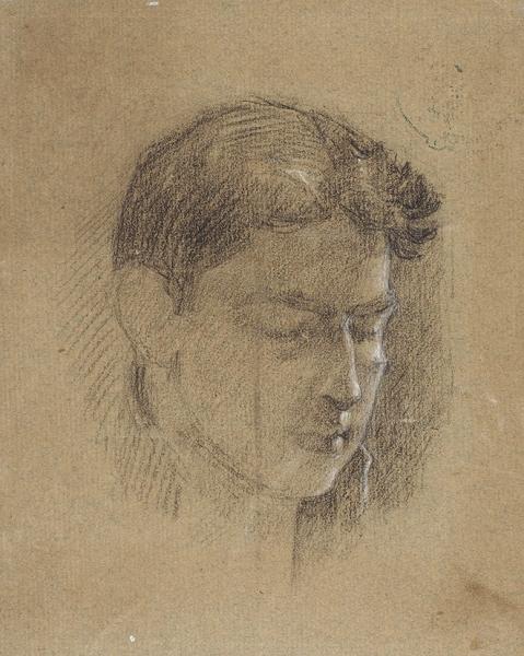 Богородский Фёдор Семёнович (1895–1959) «Голова юноши». 1910-е-1920-е. Бумага, угольный карандаш, мел, 18,2x14,7 см.
