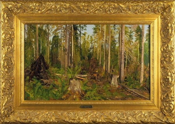 Шишкин Иван Иванович (1832–1898) «Лесной этюд». Вторая половина 1880-х—1890-е. Холст, масло, 35,5x58,5см.