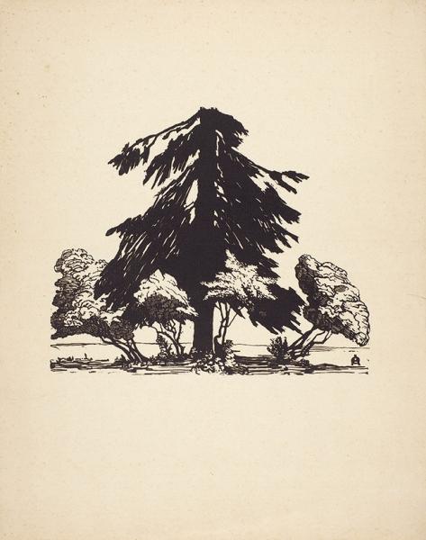 Остроумова-Лебедева Анна Петровна (1871–1955) «Сломанная ель». 1902. Бумага, ксилография, 30,3x24см (лист).